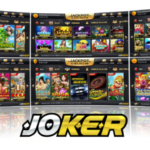 Profile picture of bettingjoker